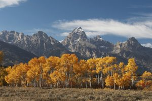 fall arts festival in jackson hole