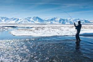 Spring Fishing in Jackson Hole